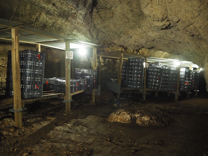 Cheese-making in a cave of the Picos de Europa, protected under European Law .. (c) Elena Paschinger